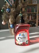 Earth Choice|Dish Wash Liquid Ultra Concentrate, 500毫升